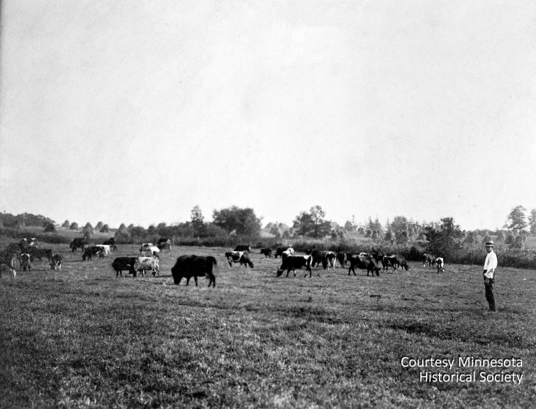 Prior to construction of the Twin Cities Assembly Plant, the area known today as Highland Park consisted almost entirely of fields and a few scattered farmhouses. Courtesy Minnesota Historical Society
